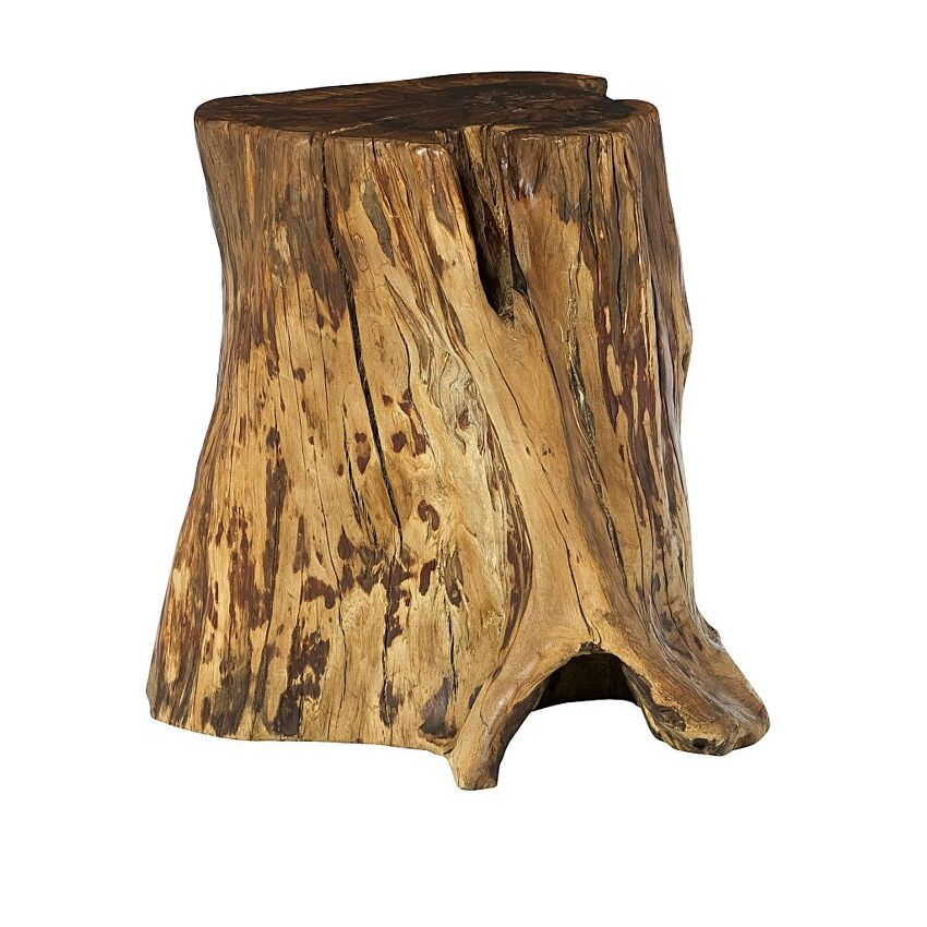 Tree Trunk Accent Table - 2