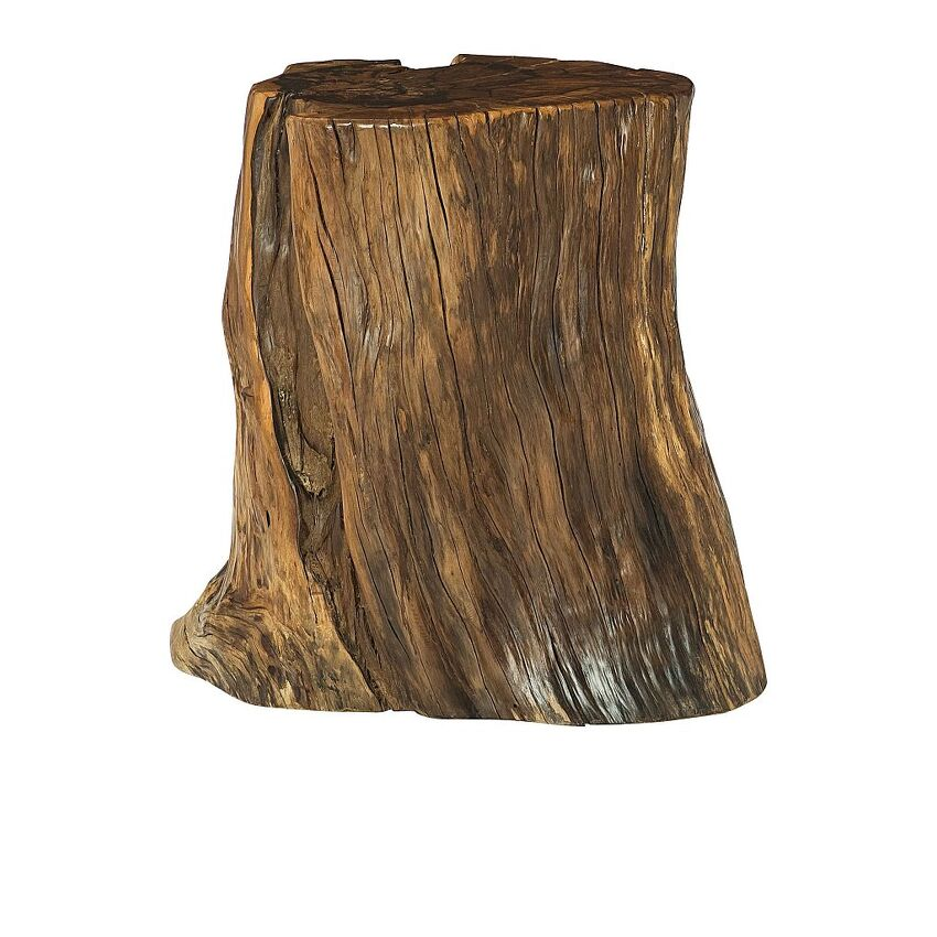 HIDDEN TREASURES-Tree Trunk Accent Table